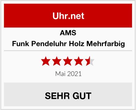 AMS Funk Pendeluhr Holz Mehrfarbig Test