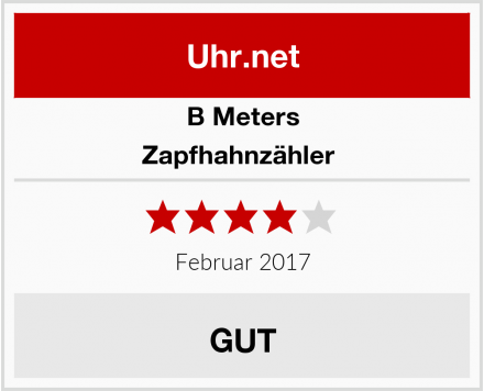 B Meters Zapfhahnzähler  Test