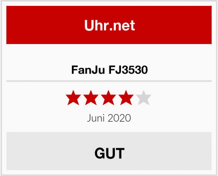 No Name FanJu FJ3530 Test