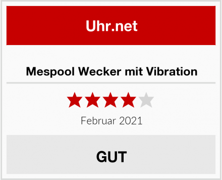 Mespool Wecker mit Vibration Test