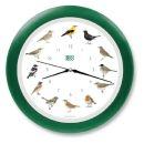 KOOKOO Singvögel